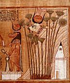 Papyrus Drawing