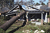 Hurricane Fran Aftermath