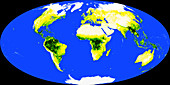 World Map with Tropical Rainforests