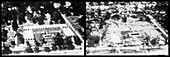 Before and After Hurricane Camille (1969)
