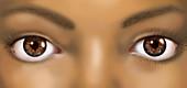 African-American Woman's Eyes