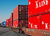 Container Cargo Train