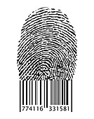 Barcode under Fingerprint,illustration