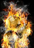 Earths On Fire,illustration
