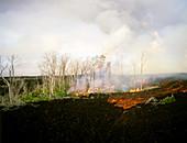 Lava,Kilauea Volcano,Hawaii