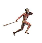 Baseball Swing,illustration