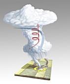 Formation of a Tornado,illustration