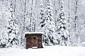 Heavy winter snow and outhouse