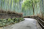 Arashiyama Bamboo Grove,Kyoto,Japan