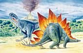 Illustration of Stegosaurus
