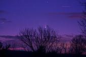 Comet PANSTARRS C 2011 L4