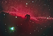 Horsehead Nebula with NGC 2023
