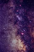 Milky Way Star Fields