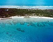 Radiation survey of Bikini Atoll,1978