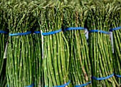 Asparagus for sale at a farmers market
