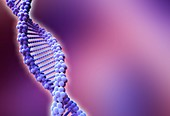 DNA strand,artwork