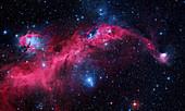 Seagull Nebula,composite image