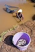 Fisherman,Malawi