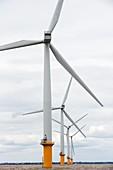 Gunfleet Sands offshore wind farm ,UK