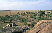 'Serengeti Plains,Tanzania'
