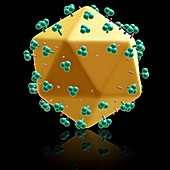 AIDS virus particle,illustration