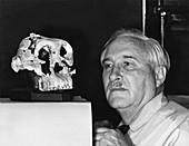 Louis Leakey,palaeontologist