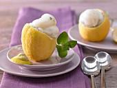 Geeiste Zitronen gefüllt mit Zitronensorbet