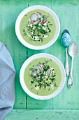 Cream green pea soup with radishes and herbs for Easter