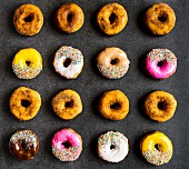Assorted doughnuts in rows