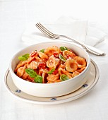 Orecchiette with ricotta, chilli peppers and basil