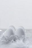 White eggs in a transparent egg holder