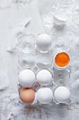 Frische Eier im durchsichtigen Eierbehälter