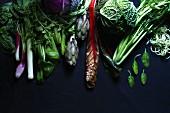 Verschiedene Gemüsesorten auf schwarzem Hintergrund