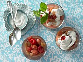 Rhubarb and raspberry compote with a mint and yoghurt sauce