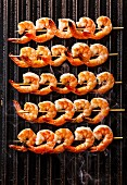 Grilled fried Prawns on skewers on black cast iron grill background
