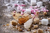 Variety of sugar white, brown pink fruit granulated, cubes and crystal