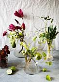 Zweige mit Blüten und Früchten sowie dekoratives Gemüse in Vasen als Naturdeko