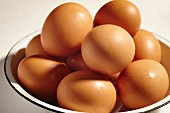 Fresh eggs from Lancaster County, Pennsylvnia, USA