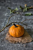 A pumpkin on sackcloth with an autumn twig