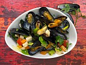 Mussels in vegetable soup with parsley roots and tomatoes
