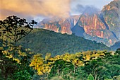 Rainforest and granite mountains,Brazil