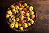 Heritage fruit varieties