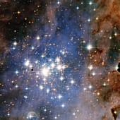 Trumpler 14 star cluster,HST image