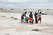 Clearing seaweed,Zanzibar