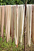 Drying palm leaves