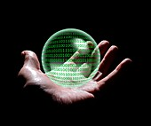Digital predictions,conceptual image