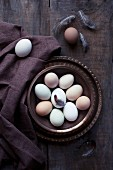 Fresh eggs with a feather in a dish