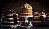 Verschiedene Schichttorten und Cupcakes