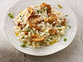 Risotto with hedgehog mushrooms, herbs and Parmesan