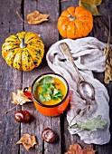 Kürbiscremesuppe in Tasse zwischen Kürbissen, Herbstlaub und Kastanien